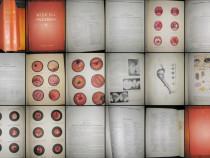 Acd. Prf. Gh. Lupu-1956- Medicina Interna 2+7. Gros copertat