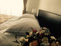 Relaxare la munte, apartament nou in regim hotelier Brasov