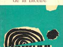 Inelele de la Bicetre de George Simenon