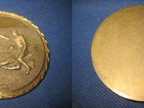 803-Placheta fotbal bronz margini cu raze aurite.