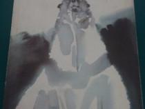 Fram ursul polar / cezar petrescu/1990