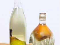 Rachiu de prune și rachiu amestec din fructe(pere, gutui)