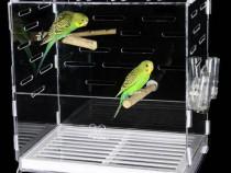 Colivie pasari/papagali transparent din plexic