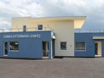 Clinică veterinară angajează medic veterinar (F)
