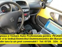 Diagnoza Peugeot testare auto service test si la domiciliu