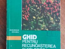 Ghid pentru recunoasterea si folosirea plantelor medicinale
