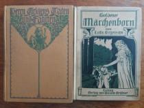 Lot 2 carti vechi de povesti in limba germana / R2P2S