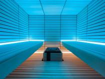 Sauna de lux linea ,saune exclusiviste ,stil si design unic