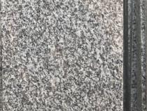 Placi/lastre granit New Grey