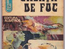 Gheata De Foc Autor(i): Victor Bîrlădeanu