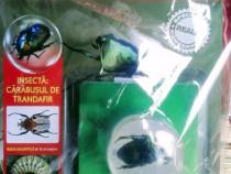 Minunile Naturii - Insectă - Cărăbușul de trandafir , revis