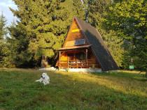 Cabana la Hargita - Bucin