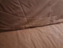 Canapea exentesibila