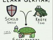 Cursuri de limba germană nivel începător