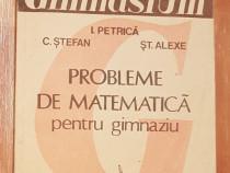 Probleme de matematica pentru gimnaziu de Ion Petrica