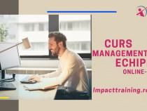 Curs Managementul Echipei online