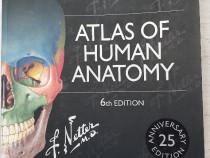 Atlas de Anatomie Umana Netter, editia a 6-a