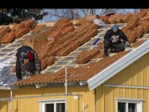 Reparatii construcții și acoperisuri
