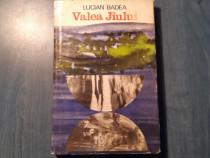 Valea Jiului monografie de Lucian Badea