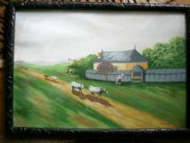 Pictura M.Pascu ***