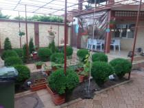 Vad vila +spatiu comercial Mangalia, Constanta