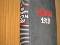B645-I-WW1-Furtuna Sturm 1918-Editie 1938 carte lb. germana.