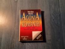 Agonia Romaniei 1944-1948 dosarele secrete acuza N. Baciu