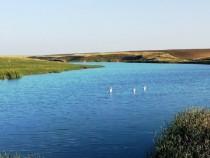Lac de pescuit, Balta pescuit, luciu de apa 40000 mp