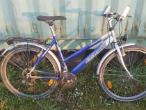Bicicleta dama 26 zoll