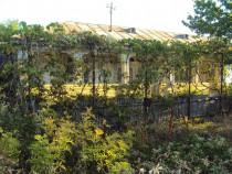 Casa, anexe si teren 6.667 mp Biliesti - Suraia