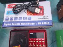 Radio mic cu acumulator (sd ,ubs)