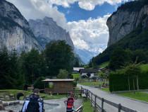 Bona Elveția