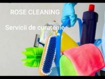 Firma servicii curătenie