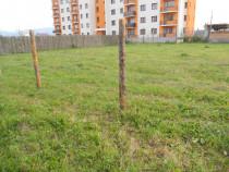 Particular, teren constructie blocuri,BRASOV,N.LABIS 1000mp
