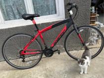 """Bicicleta echipata shimano,roti 29"""""""