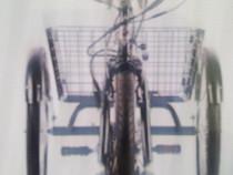 Bicicleta 3Roti moderna Pegas