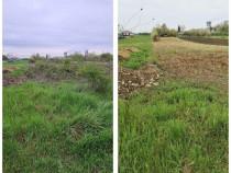 Curatare Defrisare Vegetatie Tocator