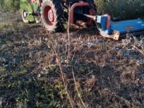 Servicii defrisat teren si transport deseu vegetal