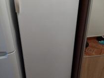 Congelator zanuzzi