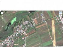Teren Caciulati (Moara Vlasiei) 3666 mp