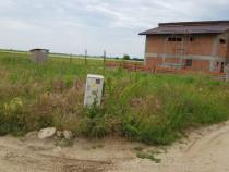 Teren comuna Berceni 503 mp gaz+lumina+autorizații