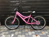 Bicicleta x fact