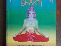 Kundalini Shakti, energia primordiala - Swami Narayanananda