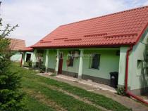 Casa mica in Vladimirescu