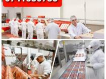 Posturi la banda, fabrica Germania - ambalare si etichetare