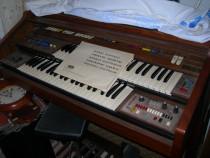 Pianine, 2 buc