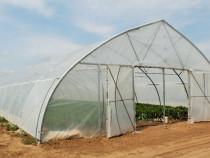 Solar legume 10 m latime