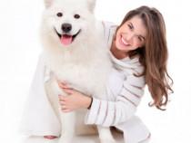 Curs frizerie canina Sfantu Gheorghe