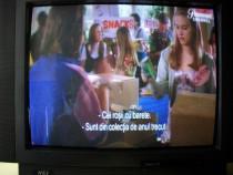 NEI, televizor color cu tub catodic, diagonala 53cm, 90