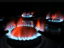 Instalații de gaze cu proiecte .
